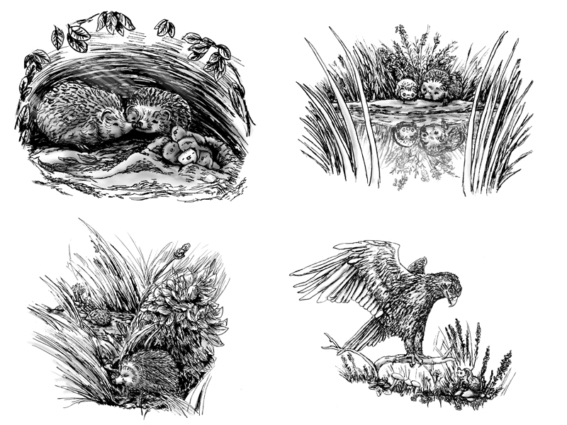 Illustrations from the book