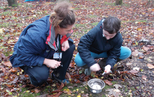 Forest School Project at Aycliffe