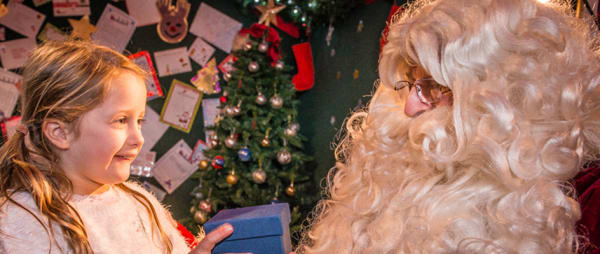 A magical Christmas experience at Kielder Winter Wonderland